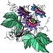 Les plantes pour dormir, un véritable somnifere naturel..