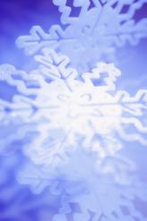 L'hiver vous hibernez 7 secrets bien gardés pour booster le métabolisme