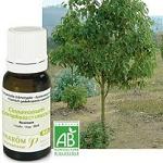 Les huiles essentielles contre la fatigue